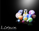 WallLinux (10)