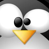 WallLinux (20)