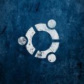 WallLinux (49)