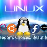 WallLinux (8)