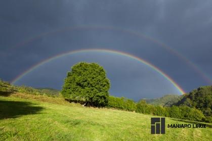 ripo_rainbow
