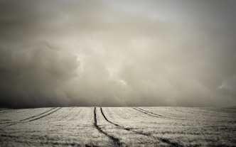 stormy_corn