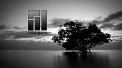 theringmaster_black-tree