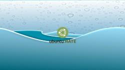 waves_ubuntu_mate