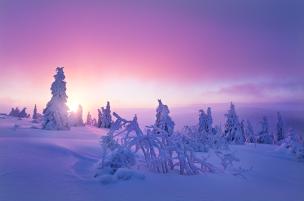 winter-in-bohemia
