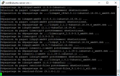 ubuntu-server-owncloud (1)