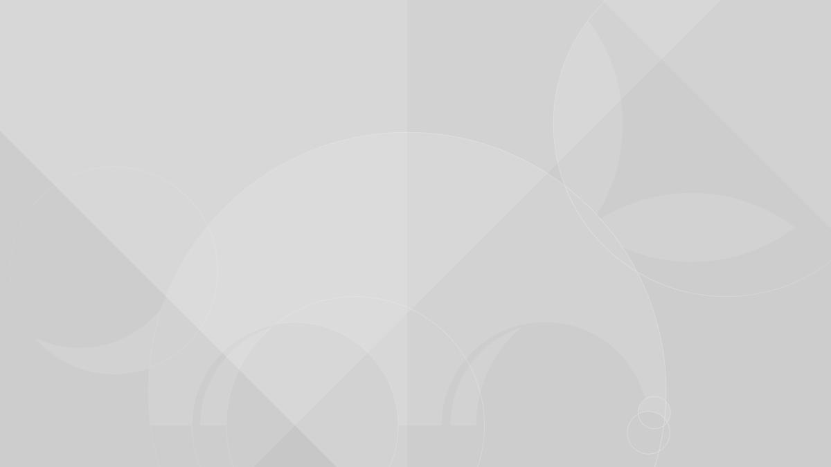 Ubuntu Bionic | L'installateur propose une nouvelle option