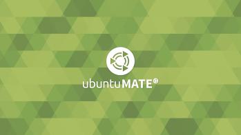 Green-Wall-Logo-Text