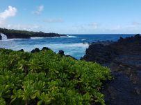 linuxmint_hawaii